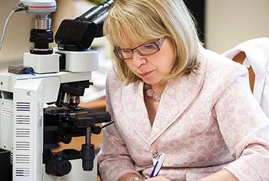 Dr. Hana Razek, M.D.